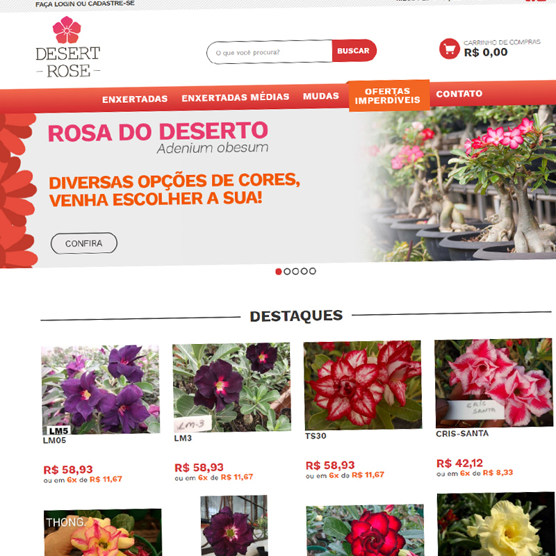 Loja Virtual No Ar: Desert Rose